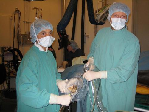 hästkirurgi1av4små